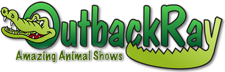 Outback Ray Logo